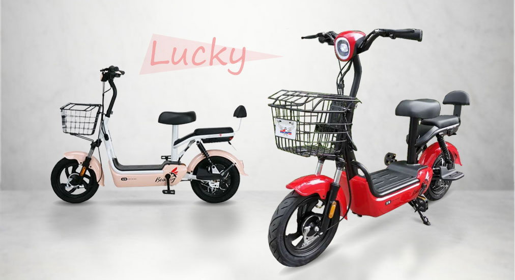 bicimoto eléctrica WHINSTHON Lucky
