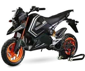 moto eléctrica Whinsthon